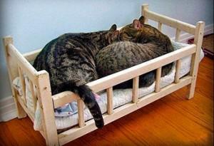 кроватка для кошек