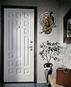 Входная дверь в интерьере